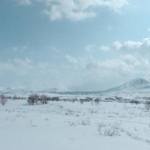 Камчатская природа