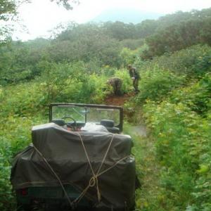 Сафари на Камчатке