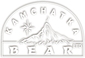 Kamchatka Bear Logo